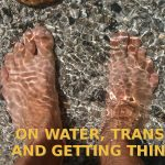 Water, transparency and getting things done